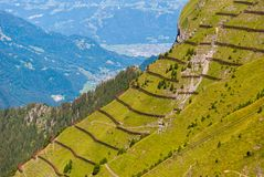 Avalanche barrier in a mountain meadow. Alpine landscape from the top of Mannlichen Jungfrau region, Bern, Switzerland.  stock images