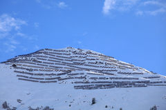 Avalanche barriers. In the mountains above Laax in the Swiss Alps Stock Image