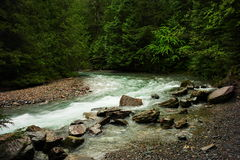 Free Avalanche Creek. Stock Photography - 48119652