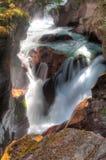 Avalanche Creek Falls Stock Image
