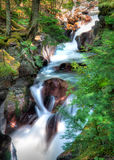 Avalanche Creek Falls Royalty Free Stock Photo