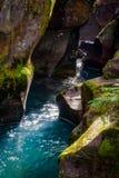 Avalanche Creek Stock Photography