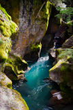 Avalanche Creek Stock Image