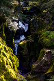 Avalanche Creek Royalty Free Stock Photography