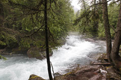 Avalanche Creek Royalty Free Stock Images