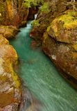 Avalanche Creek in Glacier National Park, Montana royalty free stock image