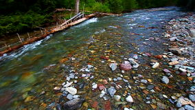 Avalanche Creek Rapids Montana Royalty Free Stock Photos