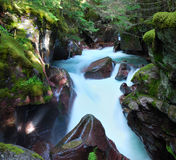 Avalanche creek slow shutter Royalty Free Stock Images