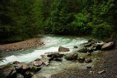 Avalanche Creek. Stock Photography