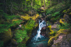 Free Avalanche Creek Waterfall. Glacier National Park, Montana, USA Royalty Free Stock Photos - 81857408