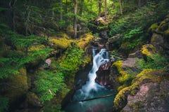 Avalanche Creek waterfall. Glacier National Park, Montana, USA Royalty Free Stock Photos