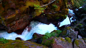 Avalanche Creek Waterfall Montana Royalty Free Stock Images