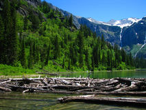 Avalanche de fleuve Photographie stock