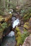Avalanche Falls, Glacier N P Stock Image
