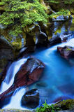 Avalanche Gorge. The waterfalls of Avalanche Gorge, Glacier National Park, Montana, USA Stock Photography