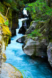 Avalanche Gorge, Glacier National Park, Montana Royalty Free Stock Photo
