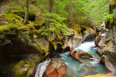 Avalanche Gorge Royalty Free Stock Image