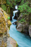Avalanche Gorge in Spring Royalty Free Stock Images