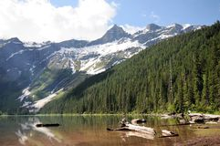 Avalanche Lake Against Green Forest and Mountains. Green trees reflected in Avalanche Lake, Montana, with snow covered granite mountains in background Royalty Free Stock Image