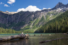 Avalanche Lake and Mountains Stock Image