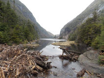 Avalanche Lake. Lake view of Avalanche lake in the Adirondack Mountains Stock Image