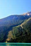 Avalanche path at Emerald Lake, Yoho National Park, Canada Royalty Free Stock Photo