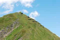 Avalanche protection. In alps, Switzerland, Europe Royalty Free Stock Image