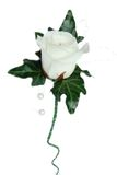Avalanche Rose and Ivy Wedding Button Stock Images
