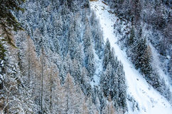 Avalanche (snowslide) Royalty Free Stock Photography