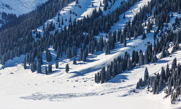 Avalanche in winter mountains in Kazakhstan Royalty Free Stock Images