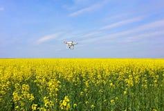 Avaliação aérea no campo da colza Imagens de Stock