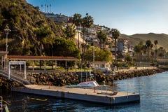 Avalon港卡塔利娜海岛的 免版税库存图片