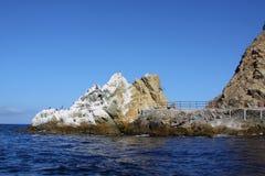 avalon νησί Καλιφόρνιας Catalina Στοκ Εικόνες