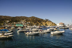 AVALON BAY CATALINA ISLAND Stock Image