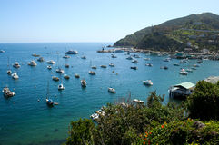 Avalon Bay Catalina 1 Royalty Free Stock Photography