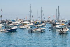 Avalon Harbor, Catalina Island, CA stock image