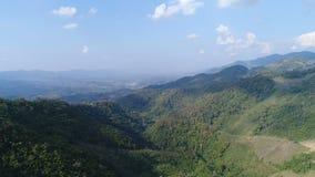 Avançant à la vallée de forêt et de montagne, tir aérien clips vidéos