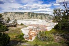 Avanço do terraço do travertino, parque nacional de Mammoth Hot Springs, Yellowstone imagens de stock royalty free