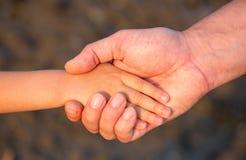 Avance de la main du père son fils d'enfant en nature de forêt d'été Photos libres de droits