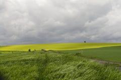 Avant la tempête Image libre de droits