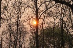 Avant le positionnement du soleil Photos libres de droits