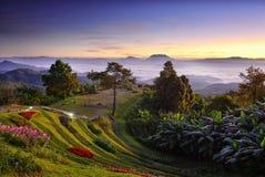 Avant lever de soleil dans le paysage de montagnes photographie stock libre de droits