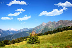 Avaro plateau. The signori mount, in the plateau of avaro, brembana valley Royalty Free Stock Photos