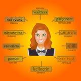 Avatar de uma mulher no formulário profissional da empregada de mesa Imagem para aprender a empregada de mesa da palavra em inglê Imagem de Stock