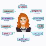 Avatar de uma mulher no formulário profissional da empregada de mesa Imagem para aprender a empregada de mesa da palavra em inglê Imagem de Stock Royalty Free