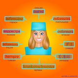 Avatar de uma mulher no formulário profissional da enfermeira Imagem para aprender a enfermeira da palavra em inglês, alemão, fra Foto de Stock Royalty Free