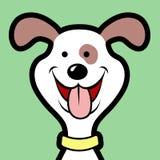 Avatar del perro Foto de archivo libre de regalías