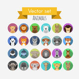 Avatars of animals. Set of flat style vector avatars of animals Royalty Free Illustration