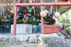 Avatele zatoka Niue Obraz Stock