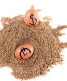 Avbilda av stora vitägg med dollarandeurotecken på en sand Arkivfoton
